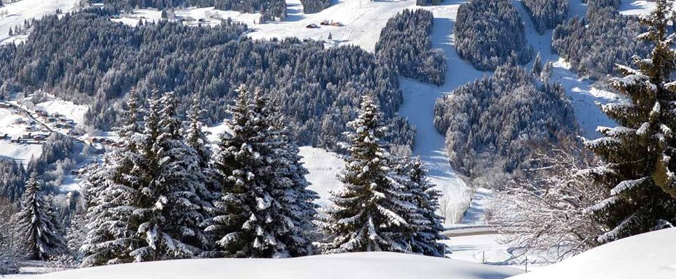 Location ski Hôtel Le Grand Tetras Morzine
